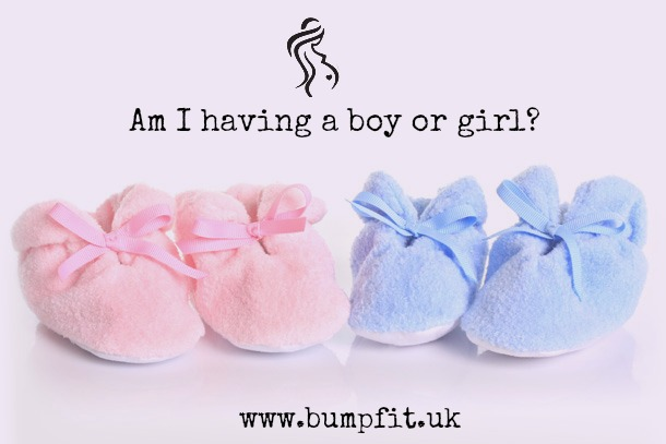 am i having a boy or girl maternity activewear uk bumpfit