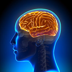 brain-injury.jpg