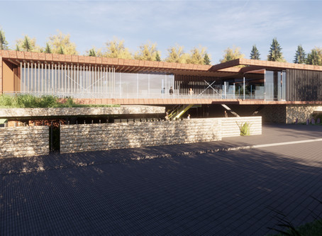 Contemporary New Build _ By Lewis Critchley Architects