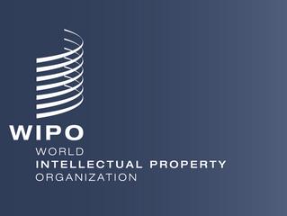 Интеллектуальный капитал компании