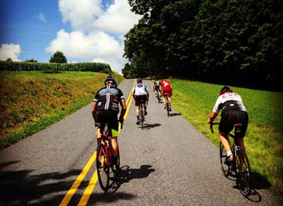 Are you training or just riding?