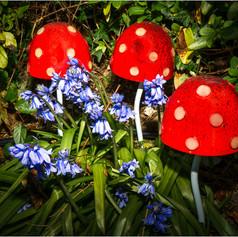 Garden Fairies in Lockdown