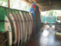Surfboards for rent and surf lessons at Pedros surf school