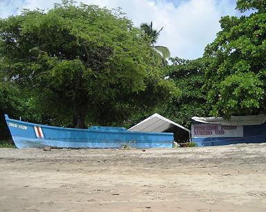 pedro's retaurant on the neach in tamarindo costa rica