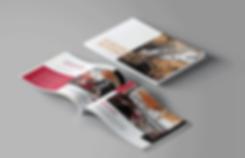 Defabrik - Multimédia, design, reklama. Reklamní a grafické studio, foto a video, sound design, logo a firemní identita, reklamní kampaně. Obálka knihy evropské automobily.