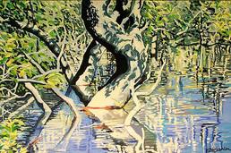 Mangrove Tangle 2 60x91.jpg
