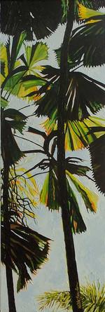 Licuala Paintings 2  004.jpg