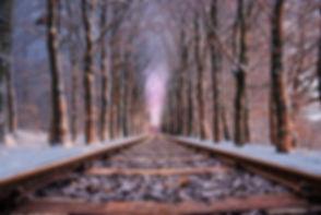 railroad-in-between-the-trees-714535.jpg