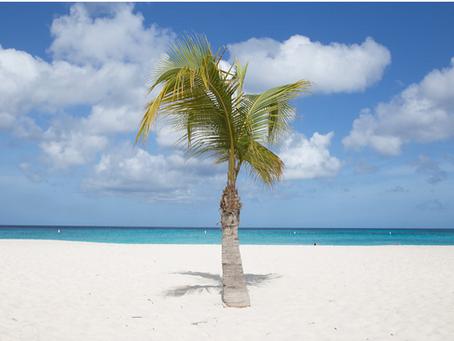 Aruba opening its borders: Tentative dates