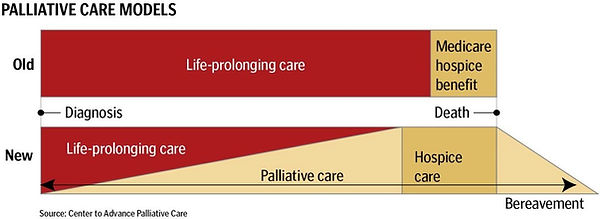 Palliative care graphic.jpg