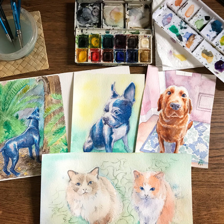 Commission pet portraits