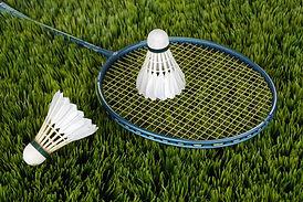 badminton-1428046_1920.jpg