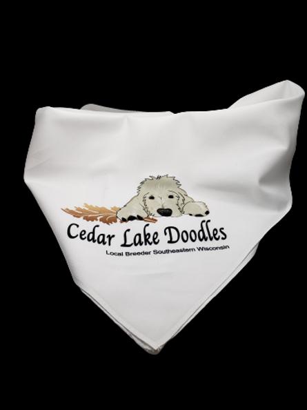 Cedar Lake Doodle Bandanna