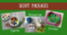 scout cover photo.png