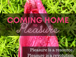 Upcoming Queer Coming Home to Pleasure Workshop - February 11th!