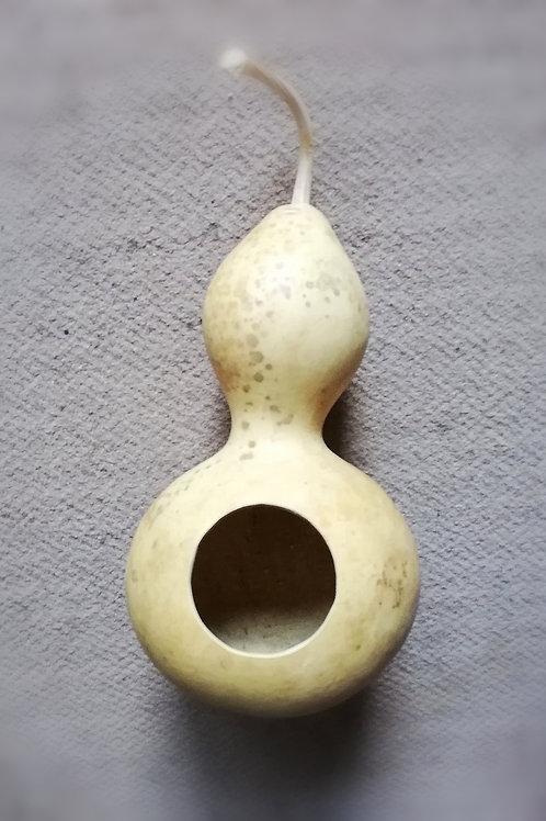 Sugar Glider Gourd Nest