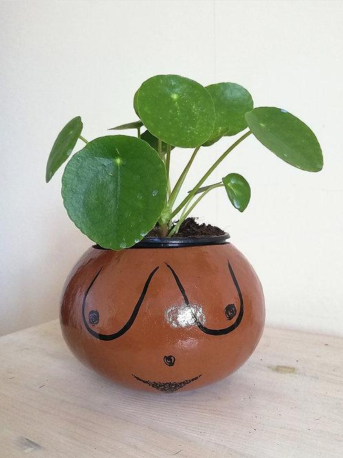 Cheeky, Body Positive Gourd Plant Pot