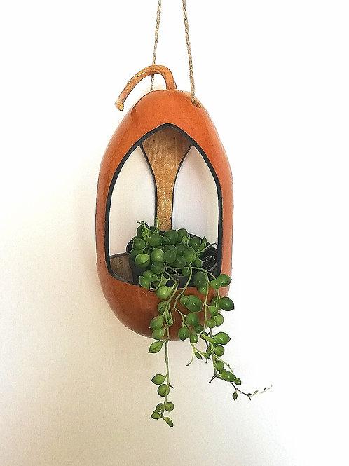 Hanging Gourd Plant Holder/Bird Feeder