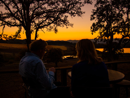 Harvest dinner at Soléna: a time to reflect