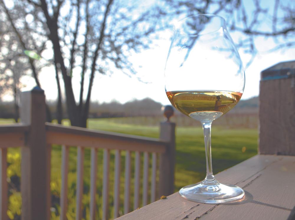 Keeler Estate Vineyard, Amity // By Rockne Roll