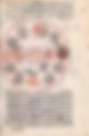 La hiérarchie initiatique dirigée par le Pôle suprême (qutb al-aqtâb)