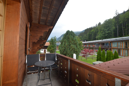 Balcony 1-Room Apartment