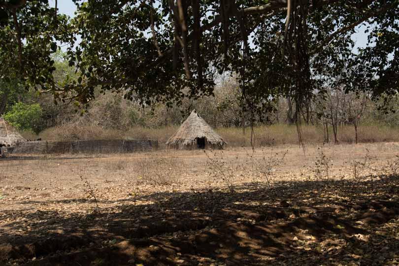 chenchu hut appapur eastern ghats telangana amrabad tiger reserve arjun kamdar