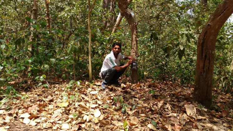 Deploying camera traps in India