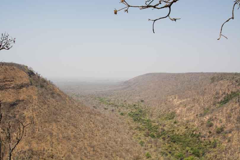 eastern ghats telangana amrabad tiger reserve arjun kamdar