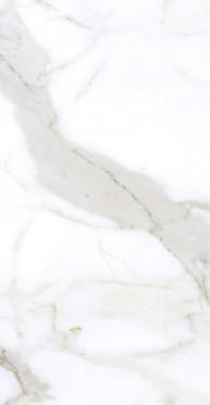 Bianco Calacatta Wall
