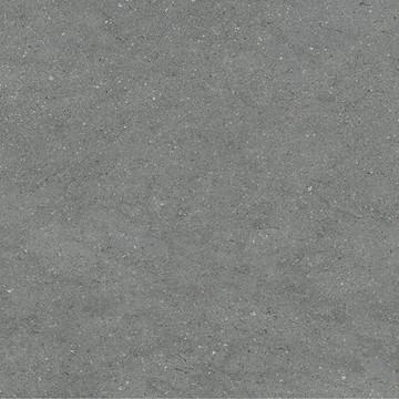 Lavika Grey
