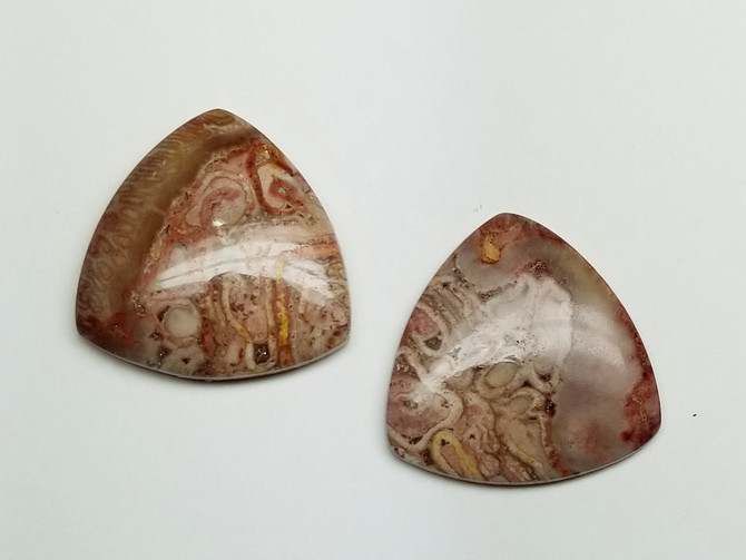 Fossil Fern - Matched Pair