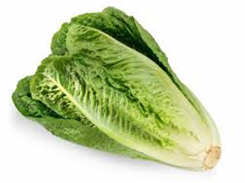Lettuce Romaine per head