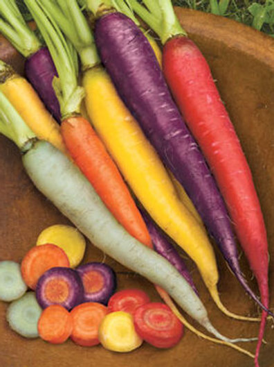 Carrot Rainbow 5lb bag