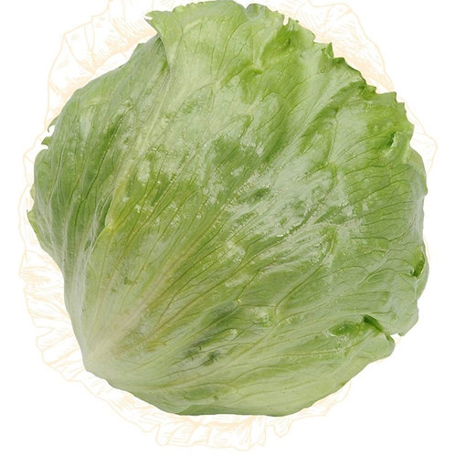 Lettuce Iceburg per head