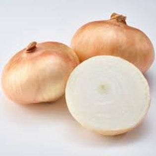 Onion Vidalia Lg 1lb bag
