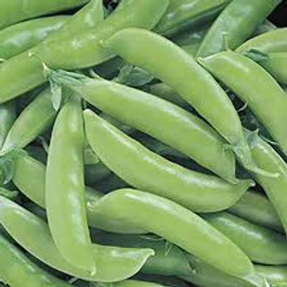 Peas Sugar Snap 1lb bag