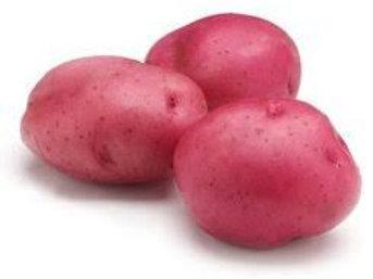 Potato Red 1lb bag