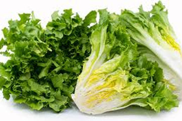 Escarole 1lb bag
