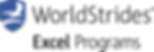 Excel PNG Logo.png