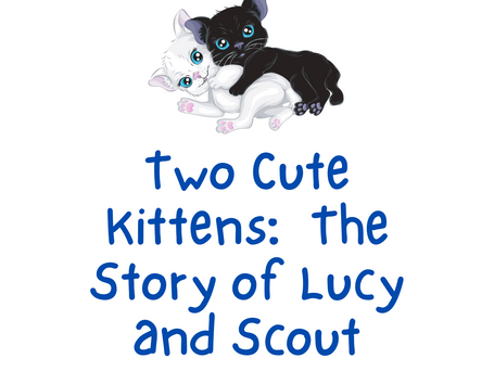 Two Cute Kittens:  The Story of Lucy and Scouy