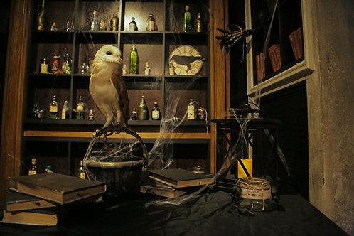 Magic school quest room
