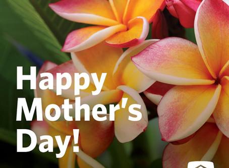 母の日おめでとう〜 🌹