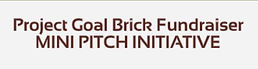 2020-12-07 22_09_37-Project Goal Brick O