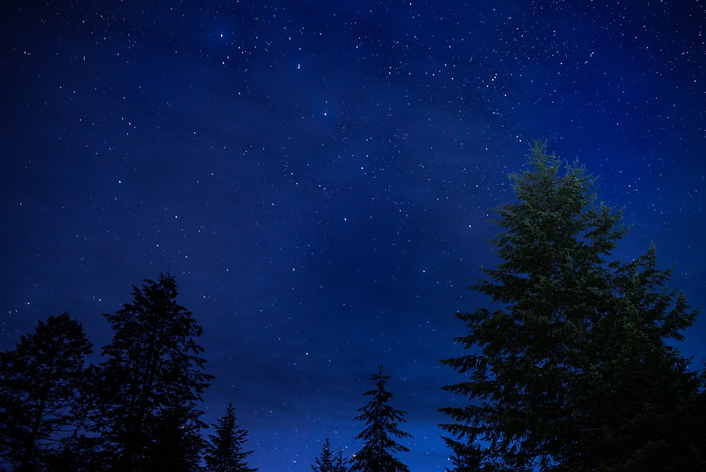 Astrophotography, Stars