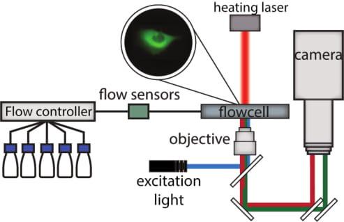 Environmental Perturbation microscopy setup