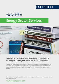 Factsheet: Energy Services