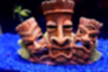 Three tiki heads in an aquarium