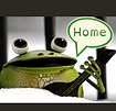 FrogYawsome_slightly lower_HOME.png