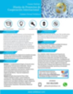 Curso_Online_Diseño_de_Proyectos_de_Coop